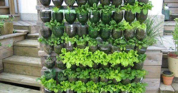 13 plastic bottle vertical garden ideas plastic bottles garden ideas and bottle - Plastic bottle vertical garden ideas ...