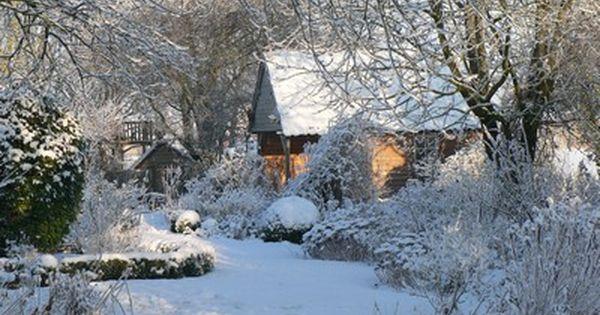 Souvenir de neige des oiseaux en hiver et un chien for Jardin anglais en hiver