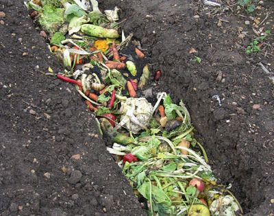 5 DIY Composting Techniques For Creating Your Own Rich, Organic Compost (Trenching)