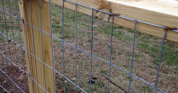 Goat Fencing Goat Fence Build Your Own And Goats