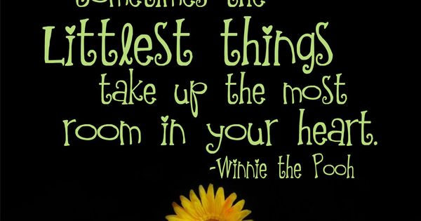 Childrens Wall Decal Winnie The Pooh Quote Vinyl Lettering