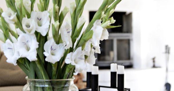 wei e gladiolen im wohnzimmer tollwasblumenmachen wohnen pinterest blumen blumendeko. Black Bedroom Furniture Sets. Home Design Ideas