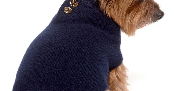 Tory Burch dog sweater.