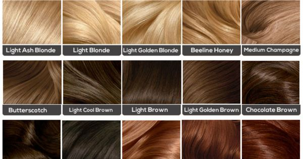 Blonde Hair Color Chart Loreal Related Keywords And Tags