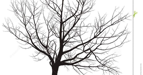 black and white tree drawings background 1 hd wallpapers stage hep   illustrations arbres