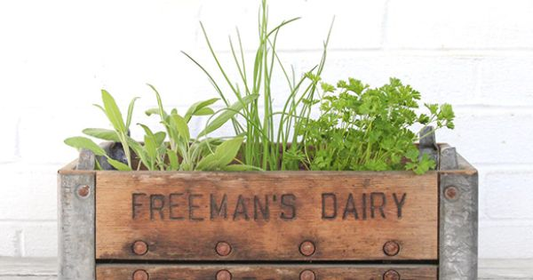 Vintage Wood and Metal Crates as Planters herb garden outside??