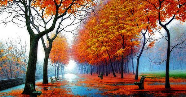 Gorgeous fall photo