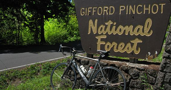Maple Leaf Campground Gifford Pinchot National Forest Campground Bike Camping