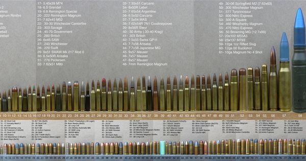 Complete Rifle Ammunition Guide Size Comparison All