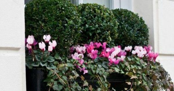 comment fleurir son balcon en 80 photos avec des id es jolies fleur et jardini res. Black Bedroom Furniture Sets. Home Design Ideas