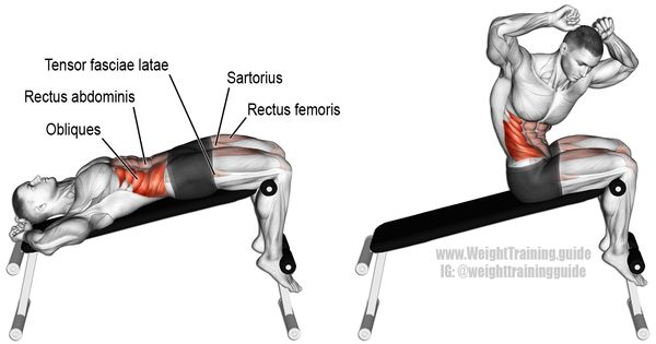 Decline Twisting Sit Up Muscles Worked Internal And