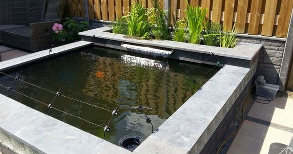 Aanleggen koi vijver hpde google zoeken tuin for Tuinvijvers aanleggen