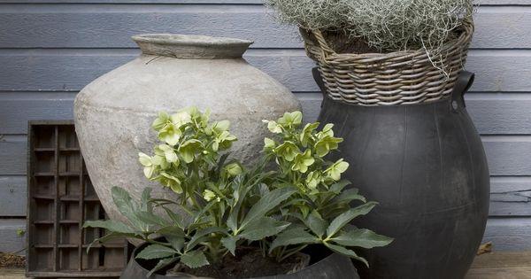Buiten styling jarrones decorativos pinterest - Jarrones decorativos para jardin ...