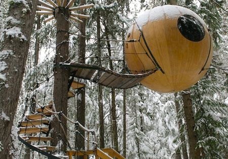 death star tree fort?