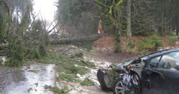 Sturmschaden Im Forstamt Dassel Kreis Northeim Sturmschaden Wald Bilder