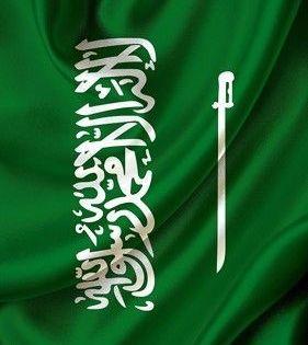 Pin By Jumanh Jaza On 101 In 2020 Saudi Arabia Flag Saudi Flag Saudi Arabian Flag