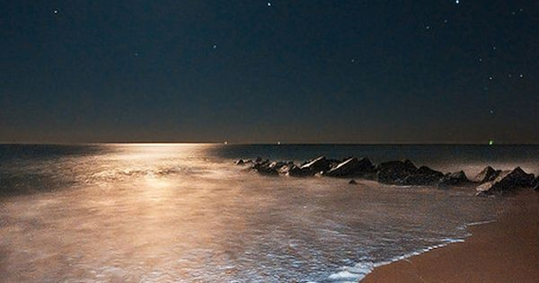 Ocean Moonrise, Vilano Beach, Florida...god, this is stunningly gorgeous. Hubby and I