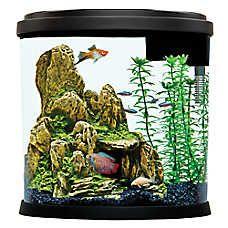 Top Fin 3 5 Gallon Enchant Aquarium Pet Spray Fish Tank Supplies Fish Tank