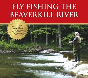 Fly Fishing The Beaverkill River Ebook By Evan Lavery Rakuten Kobo Fly Fishing River Fishing Trip