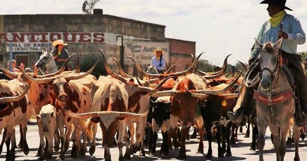 13 Charming Texas Towns To Escape The Stress Of Everyday Life In 2020 Texas Towns Texas Hill Country Texas Western