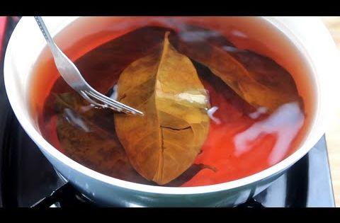 ceai de dafin si scortisoara pentru slabit grăsime arzător ceai de plante