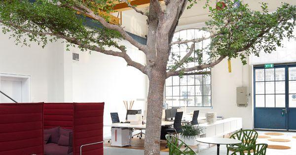 Büro mehrere Ebenen Holz Bibliothek Mappen Kunden