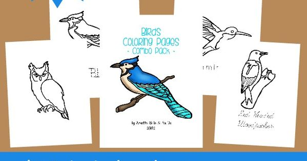 types of birds coloring pages - photo#22
