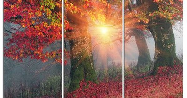 Designart Yellow Sun In Red Autumn Forest 3 Piece Graphic Art On Wrapped Canvas Set Autumn Forest Graphic Art Canvas Set