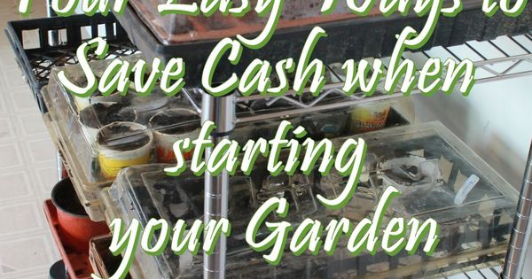 Four Easy Ways to Save Money when starting your Garden | See