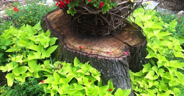 Pretty way to make use and hide a tree stump landscaping for Tree trunk uses