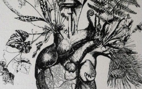 Botanical art mixed with anatomical drawings are interesting and a total fit with this