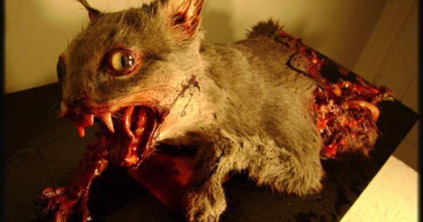 Crazy sculpted zombie cat! The Walking Dead should start ...