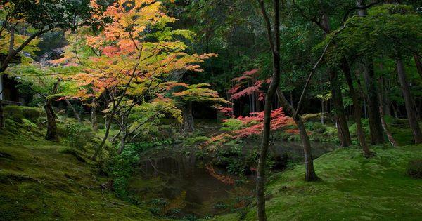 Saiho Ji The Moss Temple In Kyoto Saihō Ji The Famous