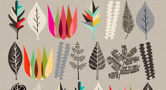 Lovely colour palette and print style. Image of Botanical Assembly 1