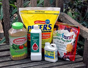 How Useful 0 20 20 Fertilizer Is Incredibly Blow Your Mind Garden Care Fertilizer For Plants Fertilizer