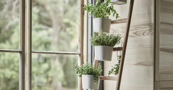 7 id es de supports pour vos plantes d int rieur support - Support pour plantes d interieur ...