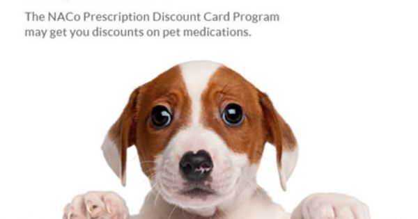 Pet Med Discounts Pet Sitting Services Your Dog Pets
