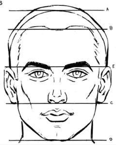 Guia Unica Como Aprender A Dibujar Rostros Humanos Paso A Paso Manualidades Dibujar Rostros Aprender A Dibujar Rostros Como Dibujar Rostros