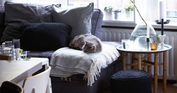 Blick Auf Ein Einfarbig Eingerichtetes Wohnzimmer Auf Dem Anthrazitfarbenen Sofa Schl Ft Die