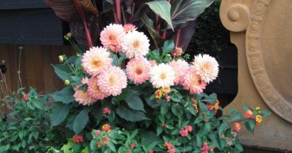 Glenna Partridge Garden Design