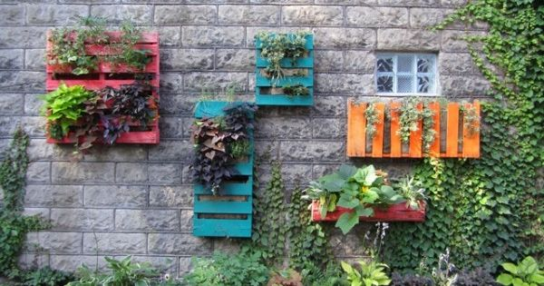 wood pallet wall gardens = creative use of space and color