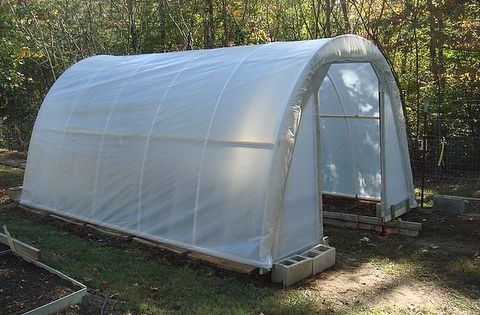 Original pin said how to build greenhouse for 50 dollars. I have
