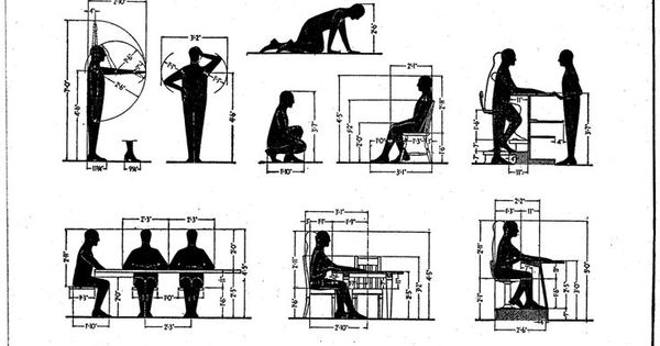 dimensionsofhumanfigure for furniture dimensions