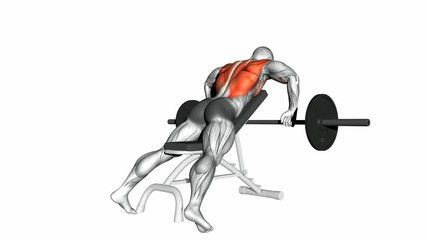 Incline Bench Barbell Rows In 2020 Barbell Row Weight Training Workouts Body Coach