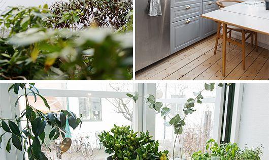 landhausk che mit holzdielen k che pinterest holzdielen landhausk chen und aussen. Black Bedroom Furniture Sets. Home Design Ideas