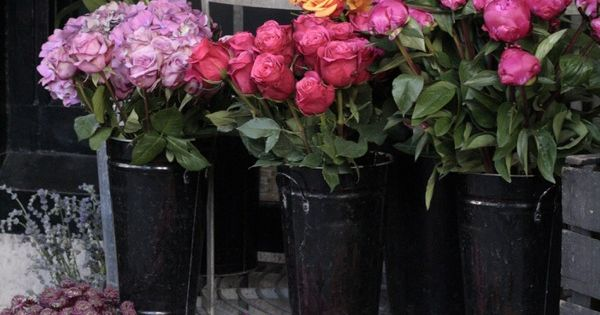 flower stand outside shop