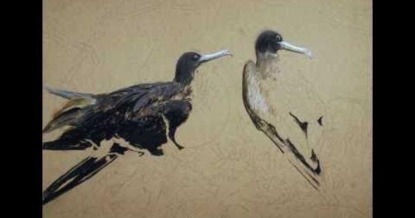 Youtube Pastel Painting Wildlife Art Art