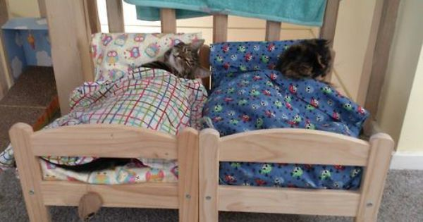 Account Suspended Ikea Doll Bed Ikea Cat Bed Ikea Cat