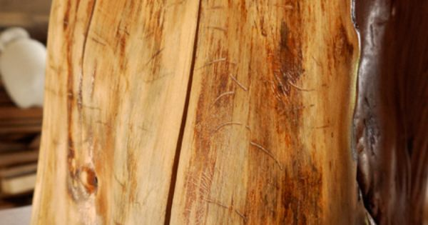 on how to dry out and treat stumps for indoor use--- tree stump tables ...