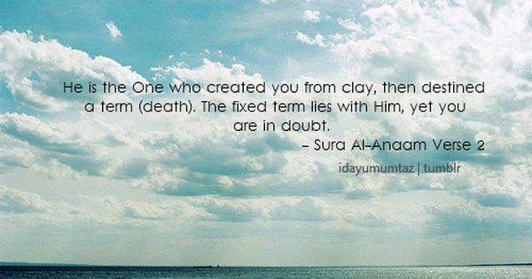 Who S Created You As Human Being It S Allah Islamic Quotes Who Created You Islam